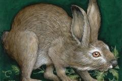 Unruly Hare